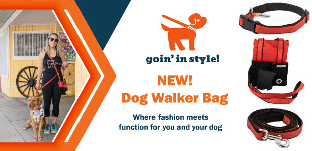 Goin' In Style – Christmas gift for dog owners/pet sitters […]