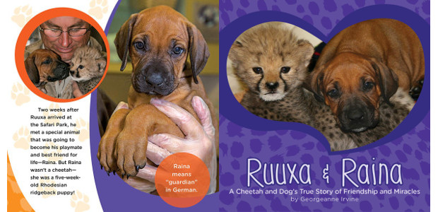 BOOK! From San Diego Zoo >> RUUXA & RAINA: a […]