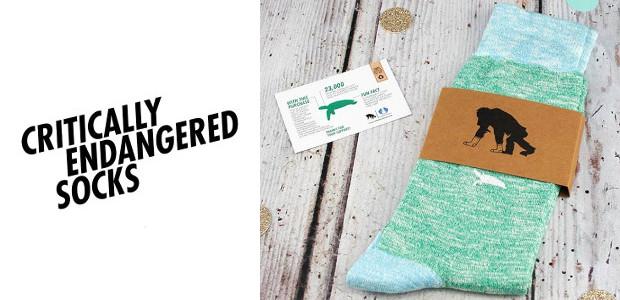 www.criticallyendangeredsocks.com INSTAGRAM | FACEBOOK Critically Endangered Socks is a sock […]