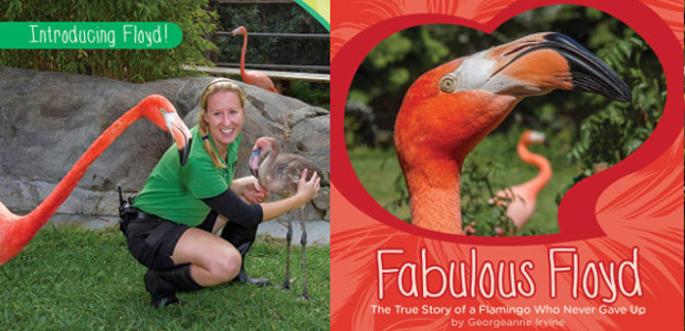BOOK > From San Diego Zoo >> Fabulous Floyd: The […]